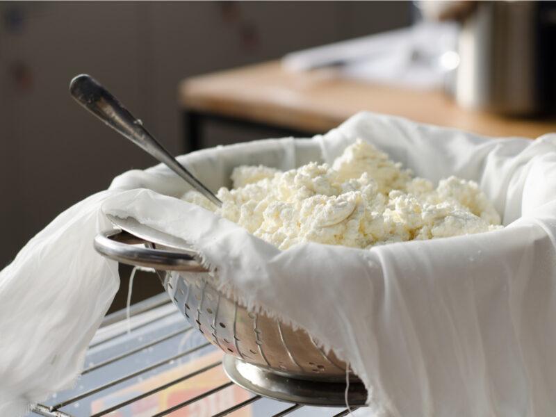 Savjeti za proizvodnju najkvalitetnijeg kravljeg sira